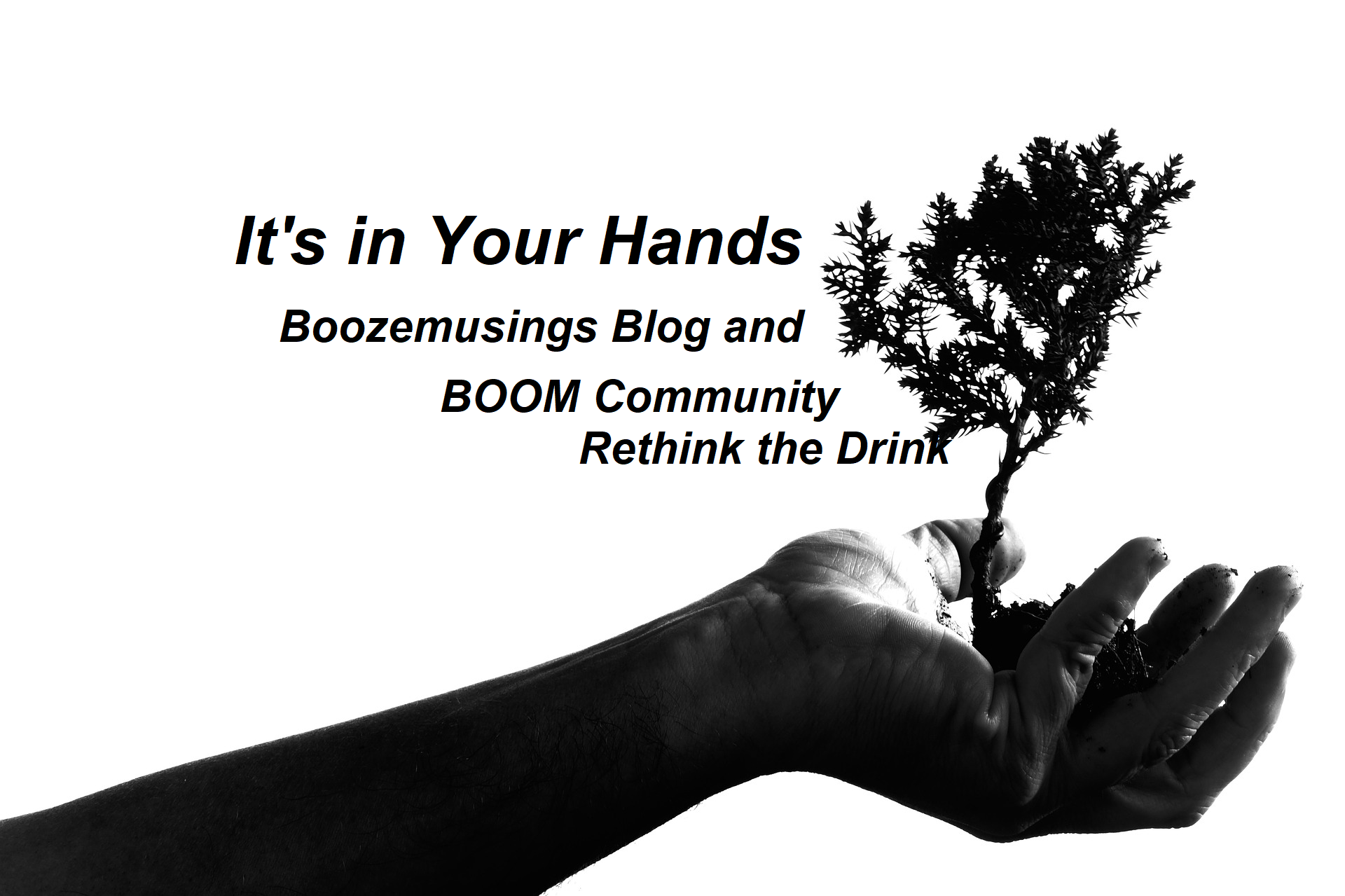 Tree growing of a hand - BOOm Community Rethink the Drink