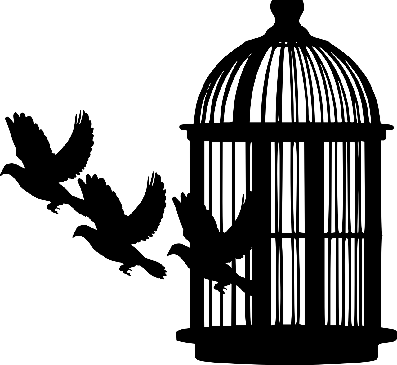 birds leaving cage