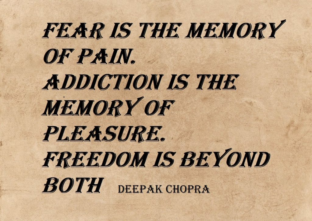 Fear is the Memory of Pain. Addiction is the Memory of Pleasure. Freedom is Beyond Both
