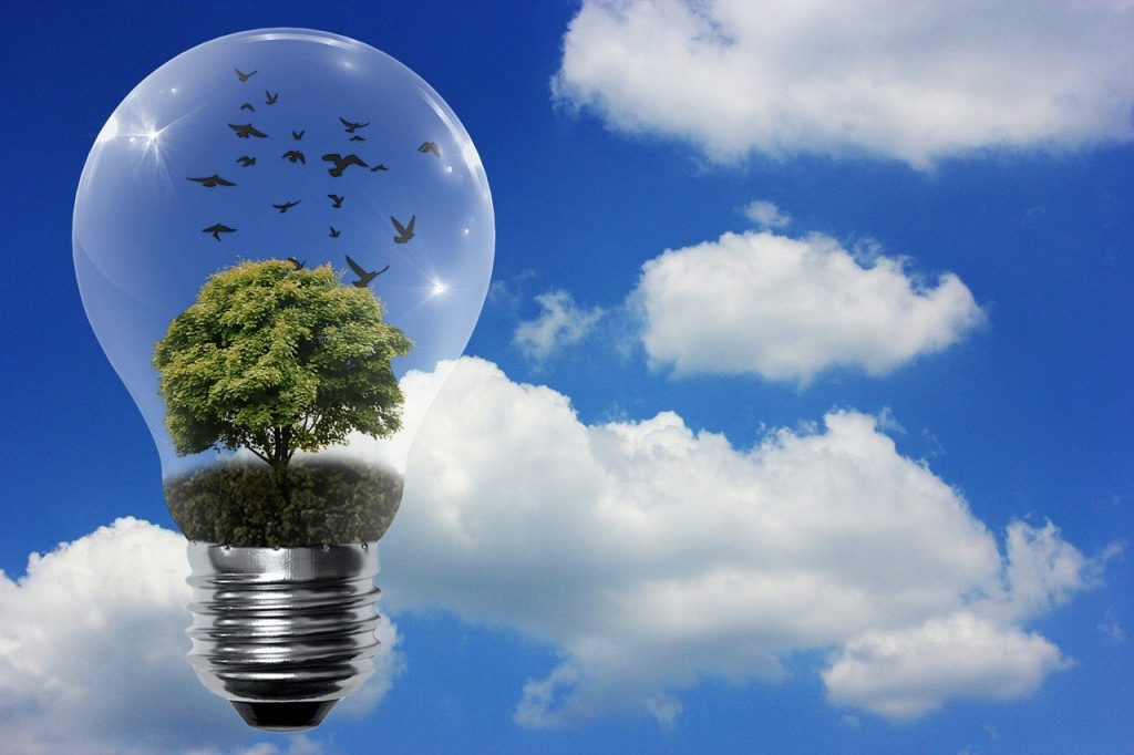 Light bulb with tree- Ideas from our online community to help you stop Drinking