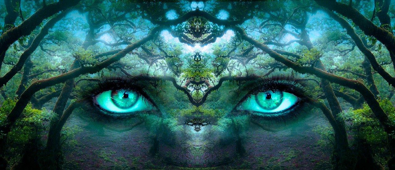 Woman's eyes in Forest Transcendental Mediation