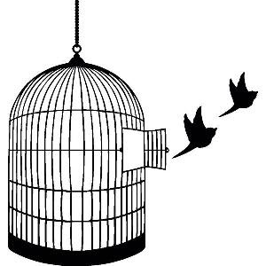 Birds flying free from cage- the freedom of sobriety