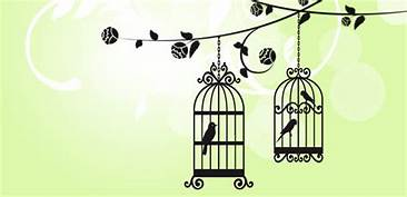 Birds in Cages - Talking to my Son about the Alcohol and sugar addiction Cages in our mind