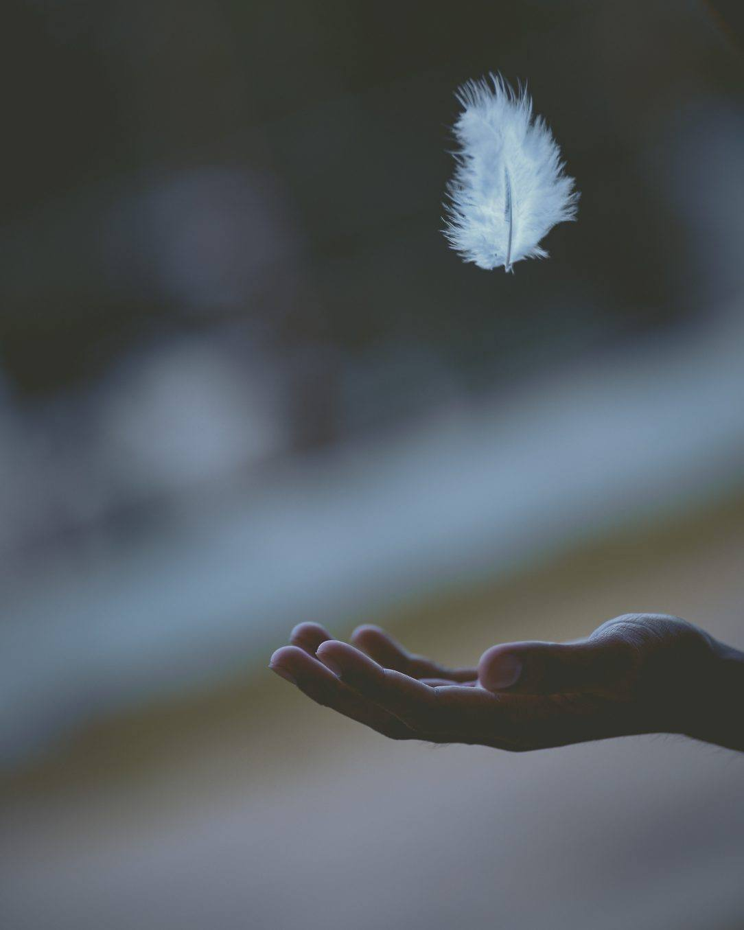 Hand catching feather surrender and empower emotional sobriety