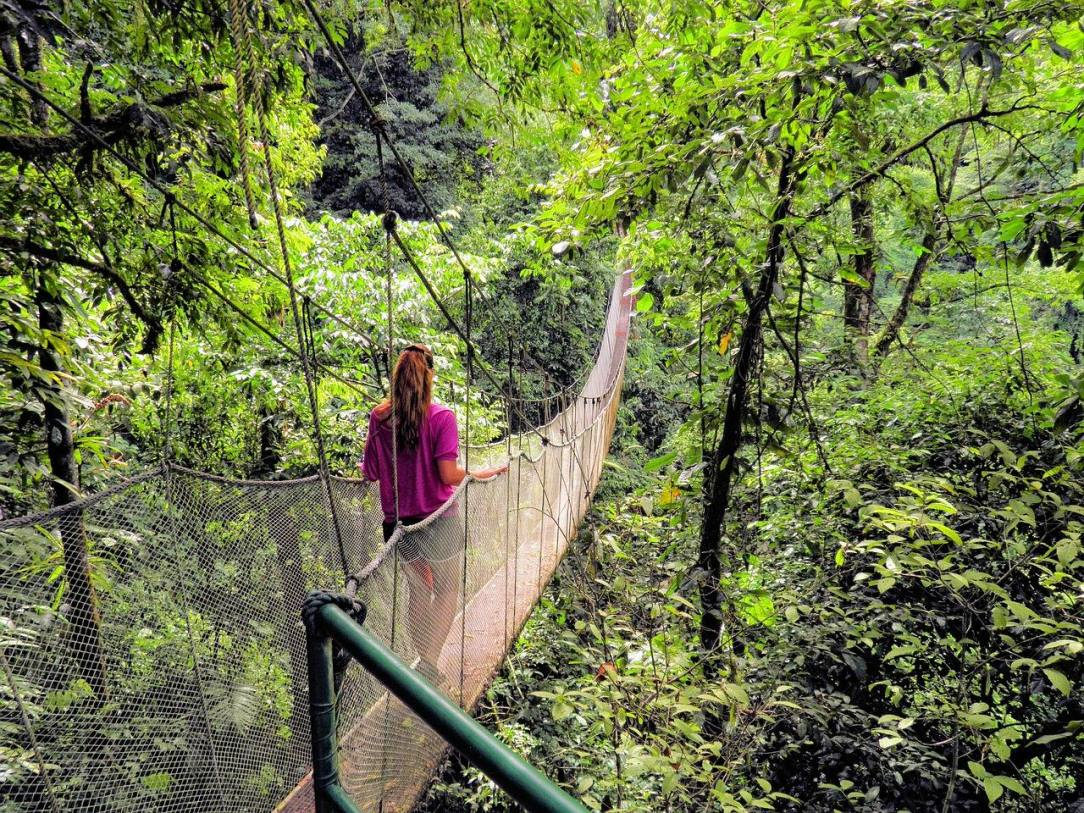 Rope bridge Progress not Perfection Finding Balance in Sobriety
